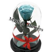 Голубая роза в колбе 16 на 10 см MINI