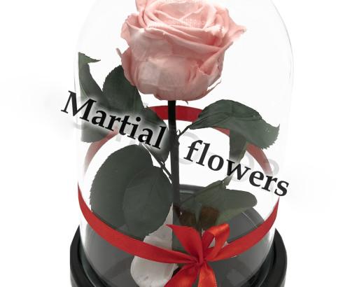 Розовая роза в колбе 16 на 10 см MINI