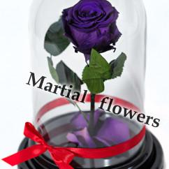 Фиолетовая роза в колбе 27 на 15 см Standart
