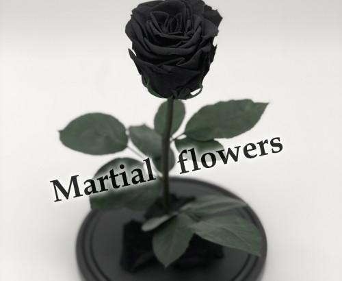 Черная роза в колбе 27 на 15 см Standart