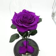 Фиолетовая  роза в колбе 27 на 15 см KING