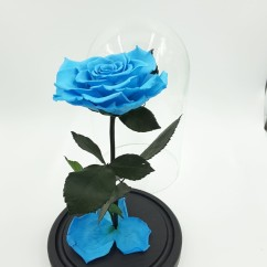 Голубая роза в колбе 27 на 15 см KING