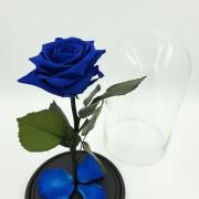 Синяя роза в колбе 27 на 15 см Standart