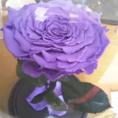 Светло-сиреневая роза в колбе 27 на 15 см KING