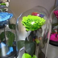 Зеленая роза в колбе 27 на 15 см KING