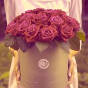 25 роза, оазис, коробка «М»