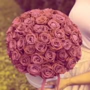 51 роза роза, оазис, коробка «М»