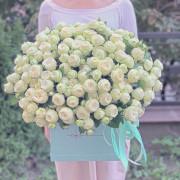 роза спрей 31 шт, коробка куб «L»