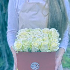 "25 роза, оазис, коробка ""S"""