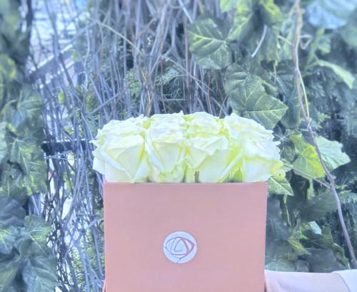 25 роза, оазис, коробка «S»